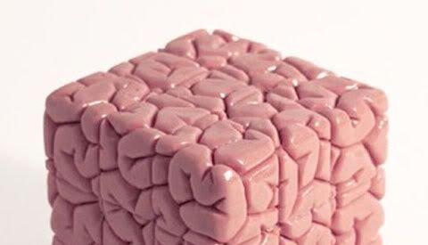 insight-vs-outsight-psicologia-etologia-publicidad-marketing